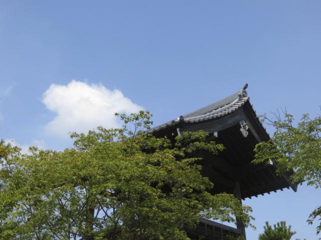 忍城付近の空